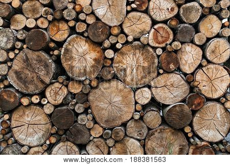 wood logs background. wood logs background. texture