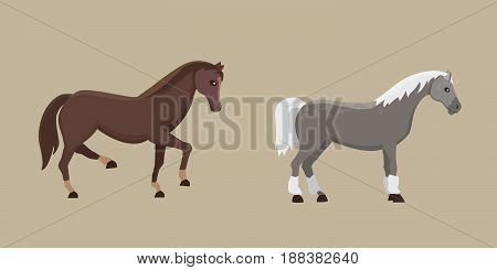 Cute horses in various poses vector design. farm wild isolated horse and different silhouette of flat pony