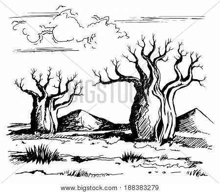 Australia landscape with baobab trees. Vector sketch drawing linear gel pen.