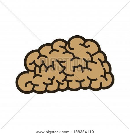 human brain think creativity image vector illustration