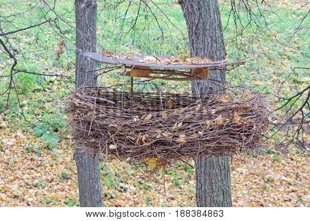 Art object is a crow's nest. Woven from birch branches a large nest with a wooden roof fixed over it.