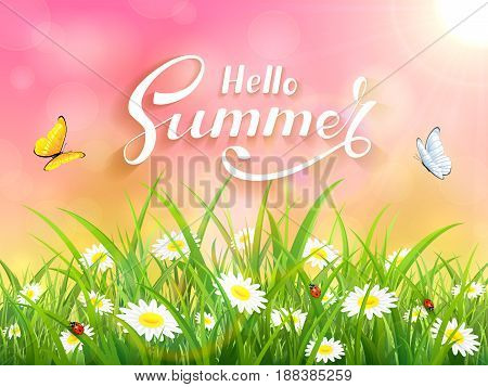Sunny pink background with lettering Hello Summer. Butterflies flying above the grass and flowers, illustration.
