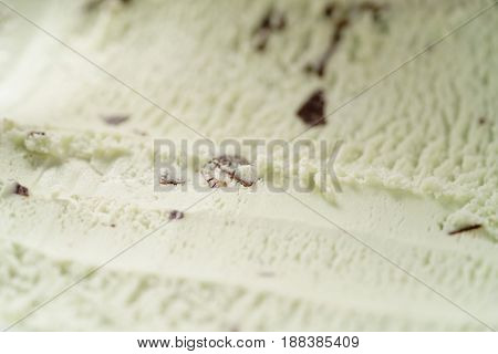 mint ice cream with chocolate chips, shallow focus