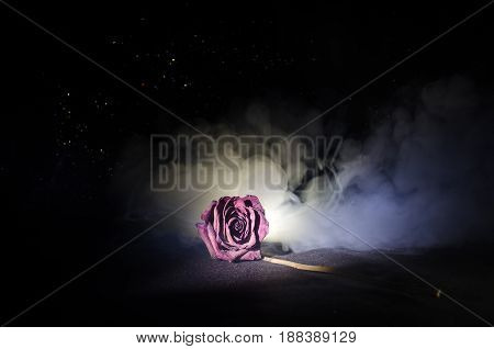 A Wilting Rose Signifies Lost Love, Divorce, Or A Bad Relationship, Dead Rose On Dark Background