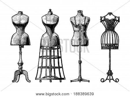 Vector black-and-white hand drawn illustration of mannequins set in vintage engraved style. Old fashion dummy dress-stand with bustle adjustable dress form frame mannequin. isolated on white background. front view.