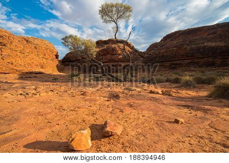 Dry landscape of the Northern Territory the red centre of outback Australia.