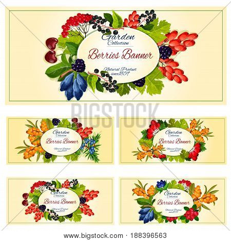 Berry on branch with fruit and leaf banner set. Summer cherry, blackberry, forest cranberry, cowberry, barberry, wild rowanberry, briar, honeysuckle, sea buckthorn, bird cherry label for food design