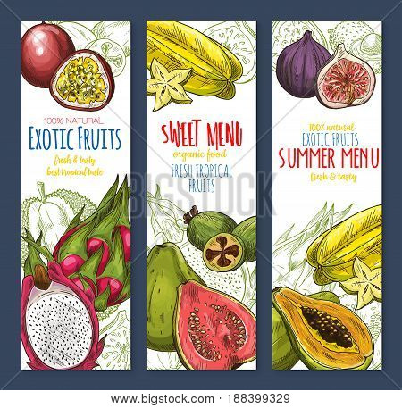 Exotic fruit, sweet tropical food banner set. Fresh papaya, feijoa, passion fruit, carambola, dragon fruit, durian, lychee, guava and fig sketches with slice and leaf. Tropical juice, dessert design