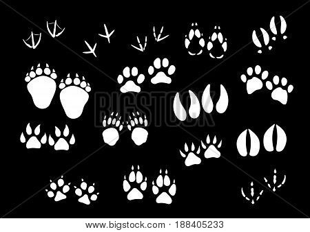 Track imprints of wild animal paws or hooves and birds feet. Foot traces of dog or car pet, sparrow or dove, wolf and fox or farm cow and horse hoof, bear or panther claw. Vector isolated icons set