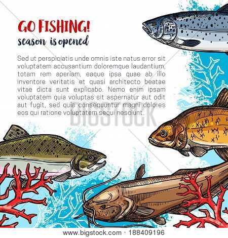 Fishing poster for fisherman club or open season for fish catch. Vector design of fishes humpback salmon, herring or trout and sheatfish or carp in ocean or river water