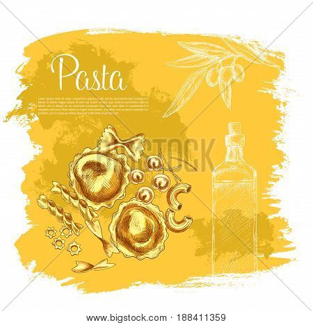 Pasta and olive oil poster. Vector design for Italian cuisine or restaurant. Design of macaroni variety spaghetti and lasagna or pappardelle, ravioli and tagliatelle, bucatini and farfalle with olives