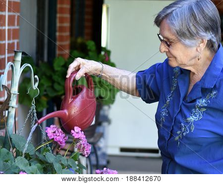 Portrait of an elder woman working at her home garden watering plants