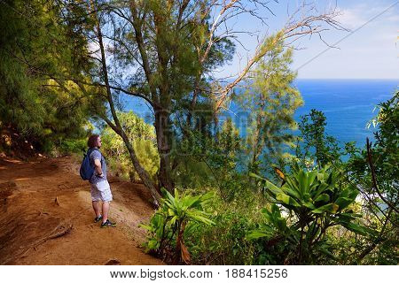 Young male tourist hiking on beautiful Pololu loop trail located near Kapaau Hawaii that features beautiful wild flowers and stunning views to the Pololu Valley. Big Island Hawaii.