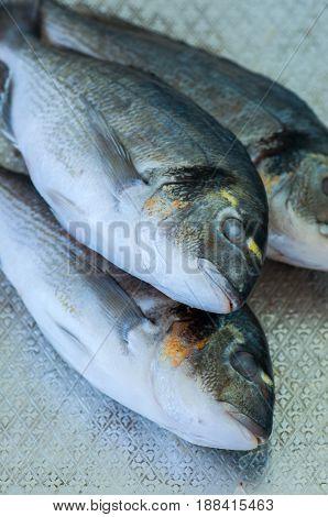 Fresh Three Raw Dorado Fish On A Metal Vintage Tray. Selective Focus. Overhead View.