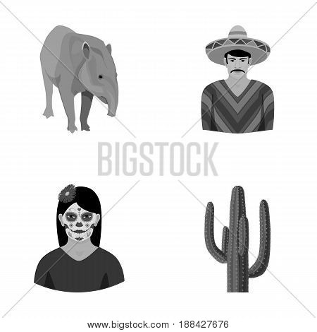 Tapir Mexican animal, a Mexican in national clothes in a poncho, a woman with a flower, a cactus. Mexico country set collection icons in monochrome style vector symbol stock illustration .