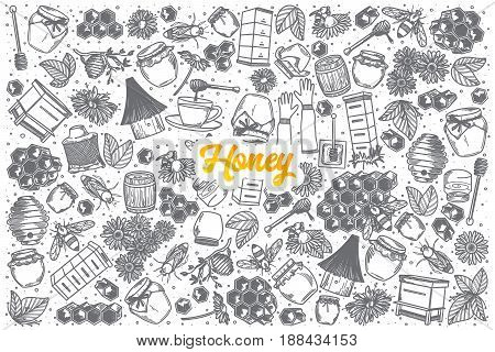 Hand drawn Honey doodle set background with orange lettering in vector