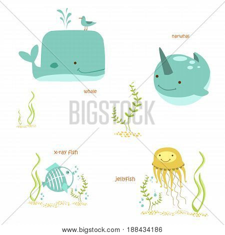 Animals set. Different marine animals. Sea life vector illustration.