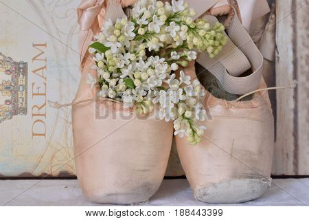 One pair of vintage ballet shoes standing up with White lilacs. Romantic style. Pastel colours and a sign dream