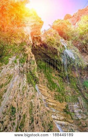 Ein Gedi National Park In Israeli Oasis With Rock Water