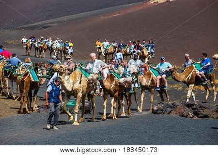 Timinfaya National Park Lanzarote Island Spain - March 30 2017: Tourists riding camels in Timanfaya National Park. Camel trek is popular attraction on Lanzarote island.