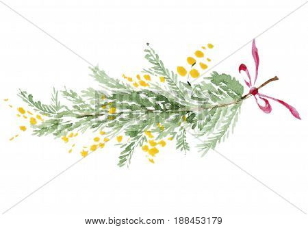 Bouquet of watercolor mimosa isolated on white background. Mimosa branch with ribbon, Leaf and bow. Perfect for wedding or greeting card.