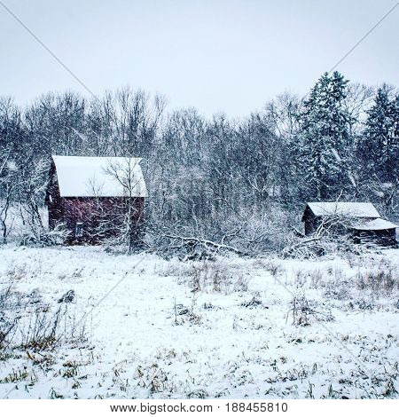 Winter in Central Wisconsin near Eau Claire