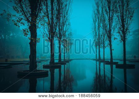 Night scene with trees and pond in Parma Emilia-Romagna Italy.
