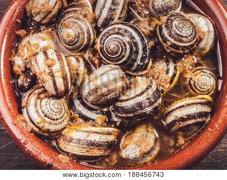 cooked snails escargots served rustic typical spanish tapa