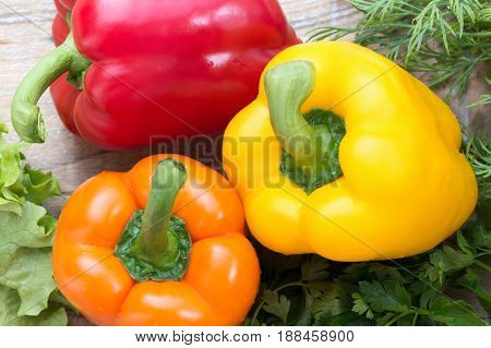 Red, orange, yellow pepper with greenery on a wooden background