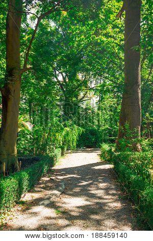 Old Historical Botanical Garden In Parma