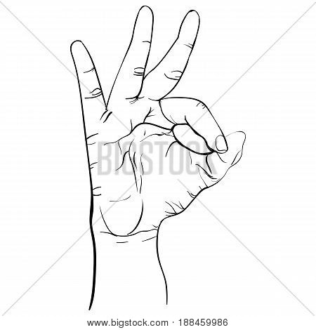 Hand in ok sign on a white isolated background vector sketch Ok gesture line art drawing ink pen hand