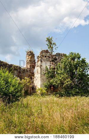 Ruins of the old castle in the Ukrainian Carpathian Mountains (XVI century Pniv village near Nadvirna town)
