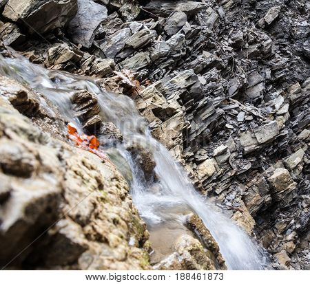 Mountain brook. Water stream on the stony surface. Ukrainian Carpathian Mountains. Close-up.