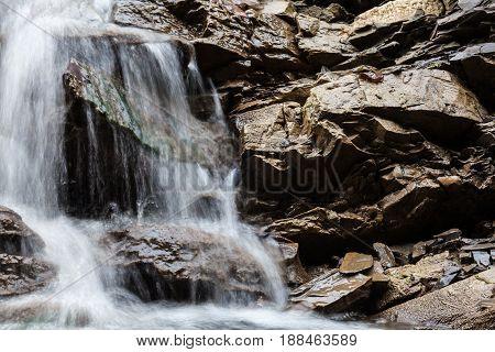 Mountain brook. Water stream in the Ukrainian Carpathian Mountains. Close-up.