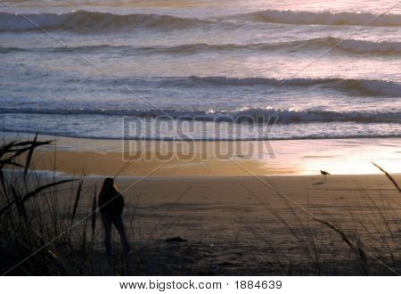 Quiet Moment On Beach