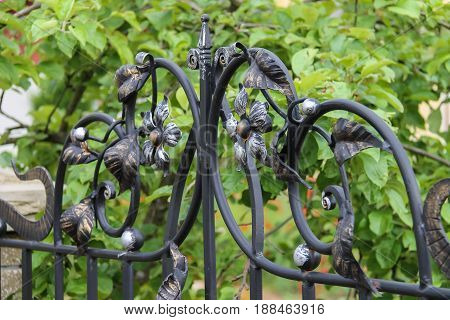 Elements of decorative floral ornament in forged fence