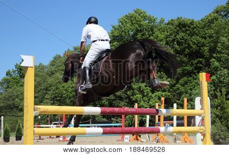a jump racing horse over the barrier on the competition