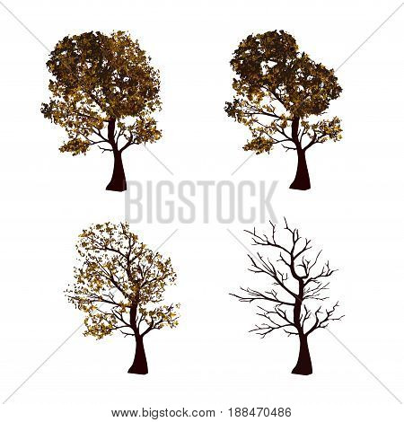 The set of autumn and winter trees. Trees isolated on white background in four variations. Vector illustration. Square location.