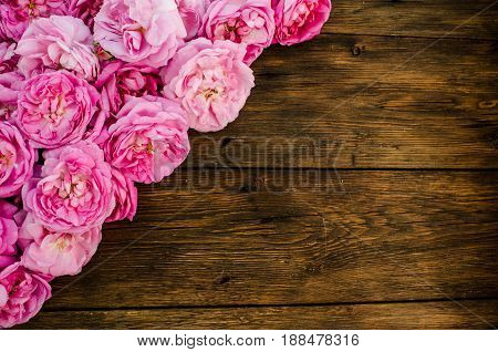 Pink Rose Flowers On Wood Background. Place For Text, Top View.