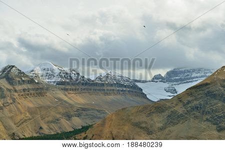 Birds Flying Over The Peaks Of The Mountains During Cloudy Day In Canadian Rockies Along The Icefiel