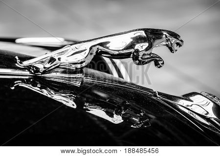 BERLIN GERMANY - MAY 17 2014: Hood ornament (Jaguar in the jump) of the Jaguar Mark 2. Black and white. 27th Oldtimer Day Berlin - Brandenburg