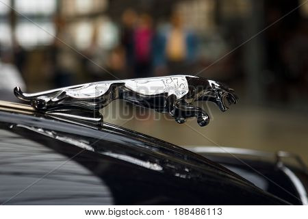 BERLIN GERMANY - MAY 17 2014: Hood ornament (Jaguar in the jump) of the sports car Jaguar XK150 S Coupe. 27th Oldtimer Day Berlin - Brandenburg