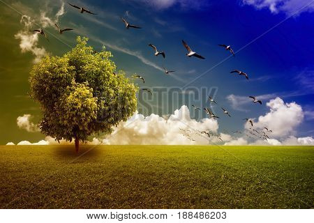 Beautiful nature with Bi-color filter. Tree on green field and blue sky with flying birds background.