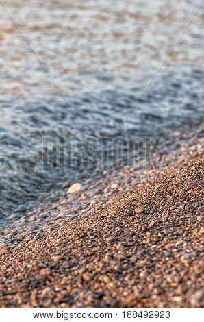 Natural background - sea shells. Would make good background.