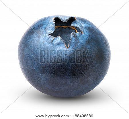 Blueberry on white background isolated, close-up .