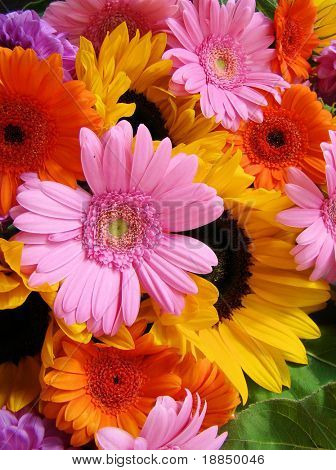 ultra colorful abundant summer bouquet with Sunflowers, Gerbera's and Dahlia's