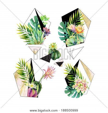 Watercolor exotic abstract terrarium plants isolated on white background. Beautiful polygons with blooming flowers and water color textures. Hand painted floral illustration
