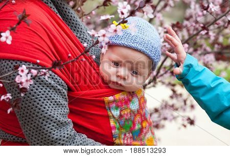 Cute baby in knitted hat sitting in a sling scarf
