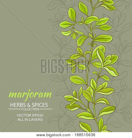 marjoram leaves vector pattern on color background