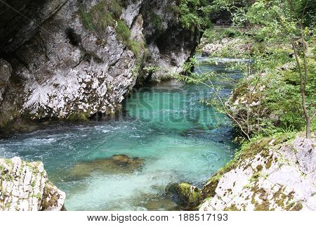 River Radovna flowing through Blejski Vintgar gorge in winter, Slovenia